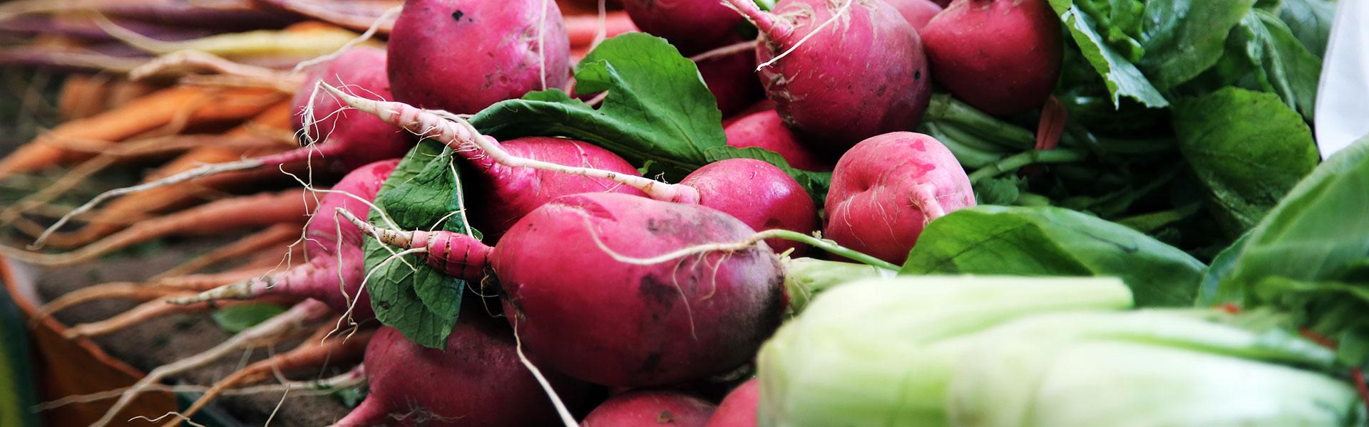 Kontakta Roslagsmat - Bild på grönsaker
