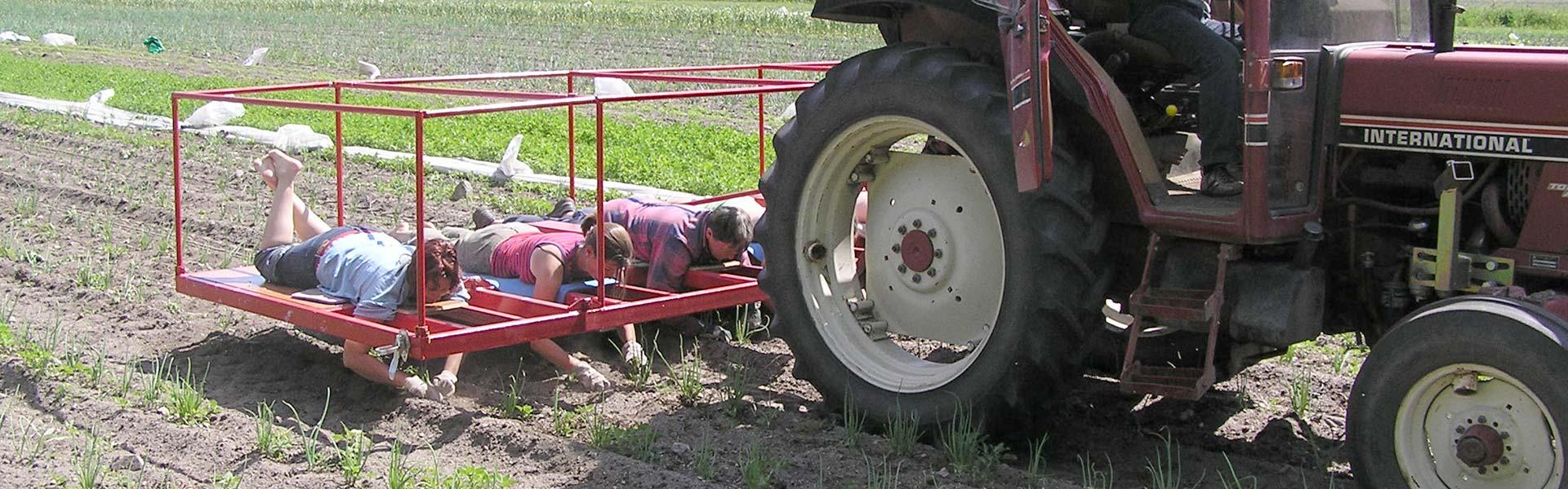 Senneby Trädgård - Traktor